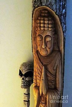 Buddha Skull by Scott Shaw