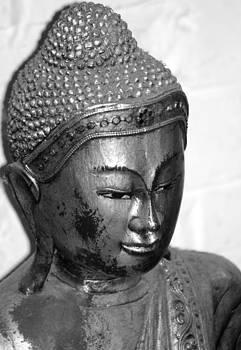 Buddha  by Tom Salt