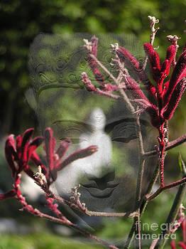 Valerie Freeman - Buddha Transition