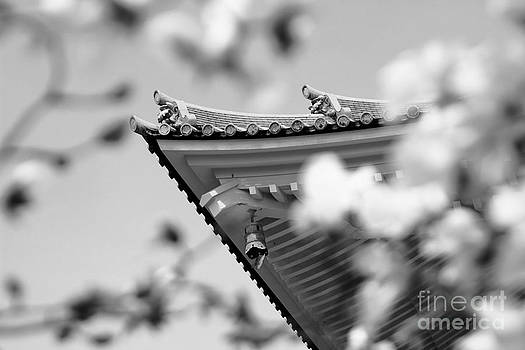 Beverly Claire Kaiya - Buddhist Temple in Black and White - Roof Tile Details