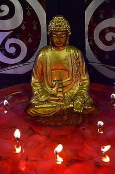 Budha lights by Riad Belhimer