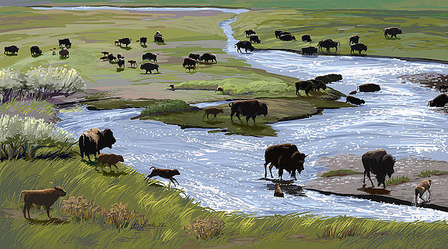Buffalo Ford by Pam Little