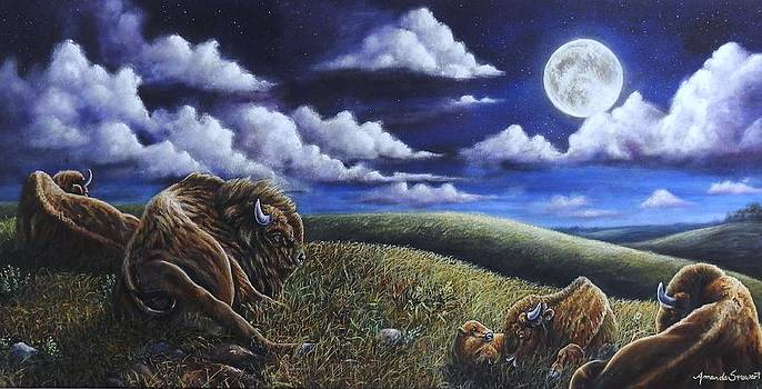 Buffalo Moon by Amanda Hukill