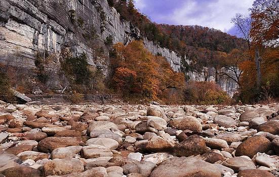 Buffalo River by Renee Hardison