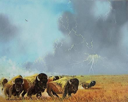 Buffalo Run by Don Griffiths