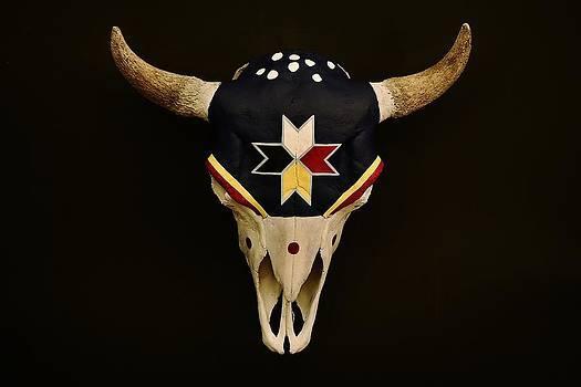 Joy Bradley - Buffalo Skull