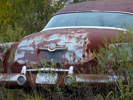 Buick Eight by Ami Clayton