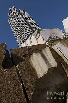 Sherry Davis - Building Out of Concrete