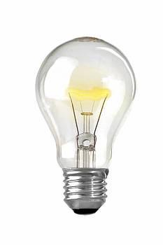 Bulb by Martin Joyful