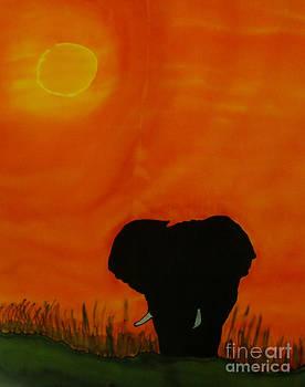 Bull Elephant at Chobe River by Diane Maley