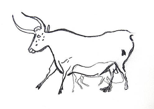 Bull Line Drawing by Melinda Saminski
