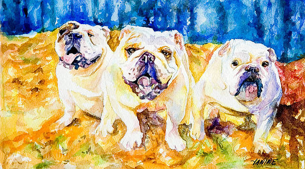 Bulldog Party by Janine Hoefler