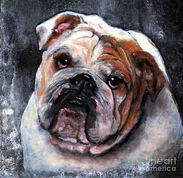 Bulldog by Wendy Ray