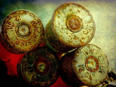 Bullet Casings by Amanda Struz