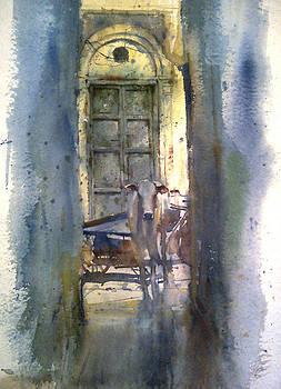 Bullock In Street by Mohan Watercolours