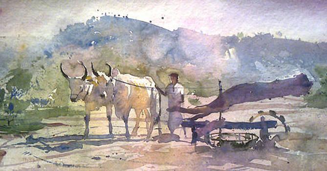 Bullock by Mohan Watercolours