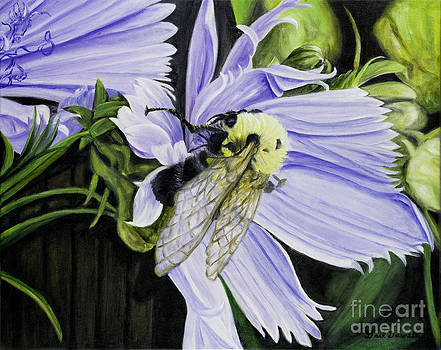 Bumble Bee on a Cornflower by Gail Darnell