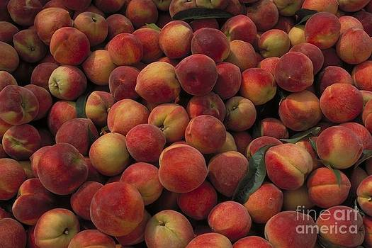 Bunches of Peaches by Janet Moss