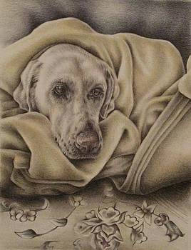 Bundled Up by Lisa Marie Szkolnik
