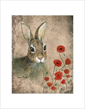 Bunny and Poppies by Dana Spring Parish