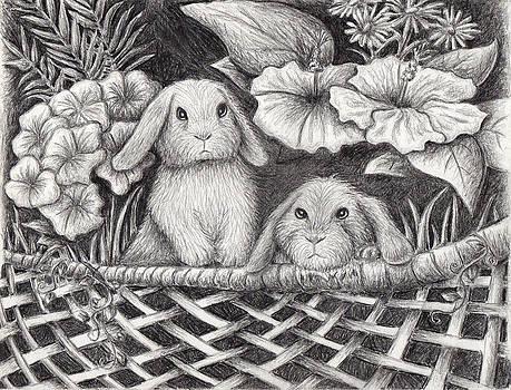 Jeanette K - Bunny Rabbit Garden