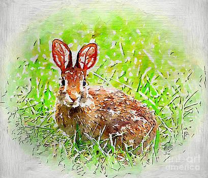 Bunny - Watercolor Art by Kerri Farley