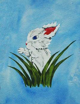 Bunny with Blue by Ally Mueller