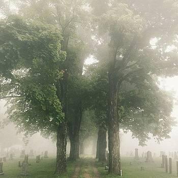 Buried In Fog by Mark Scheffer