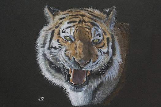 Burning Bright - Siberian Tiger by Jill Parry