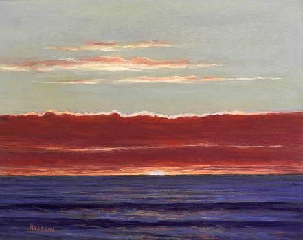 Burning Skies by Cheri Halsema