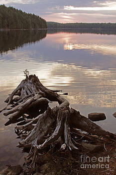 Burnt Island Lake Sunset by Chris Hill
