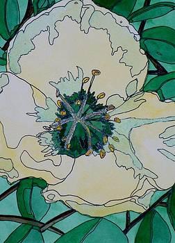 Bursting With Beauty by Donna Whitsitt