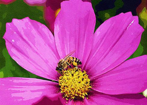 Cindy Nunn - Busy Lil Bee