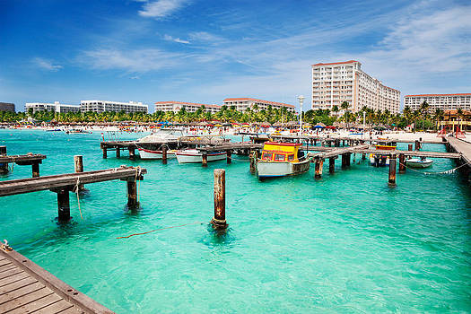 Jo Ann Snover - Busy Palm Beach