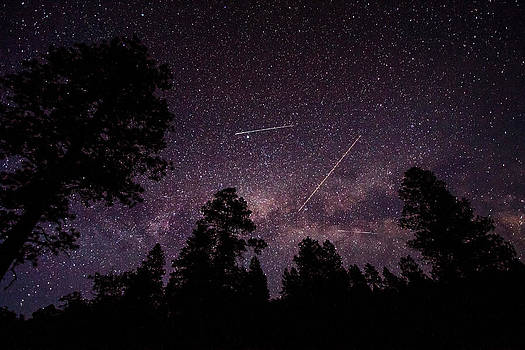 Busy Sky - Shooting Stars, Planes and Satellites fill Colorado Sky by Sean Ramsey