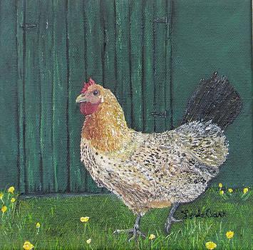 Buttercup Betty by Linda Clark
