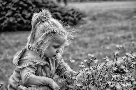 Buttercup by Gail Bridger