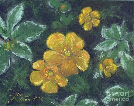 Buttercups and Bishops by Grace Goodson