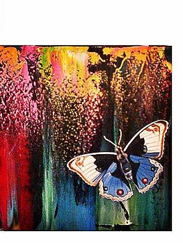 Butterflie by Nelu Gradeanu