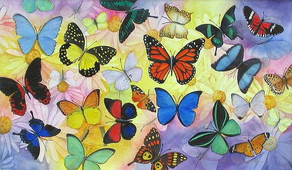 Butterflies and Daisies by Luane Penarosa