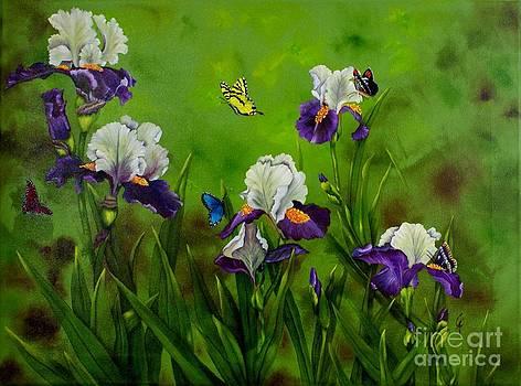 Butterflies in the Iris by Carol Avants