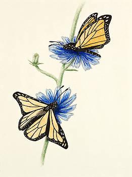 Jeanette K - Butterflies