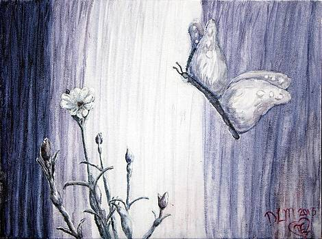 Butterfly at the Veil by Dawna Morton