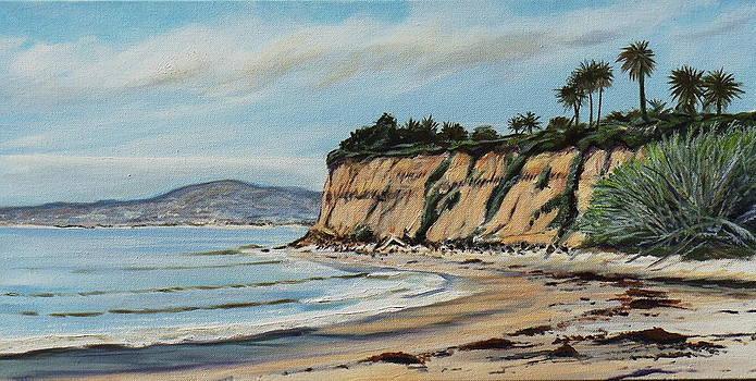 Butterfly Beach Santa Barbara by Jeffrey Campbell