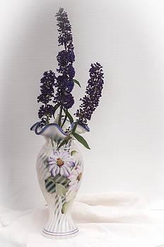 Butterfly Bush Blooms by Cheryl McCain