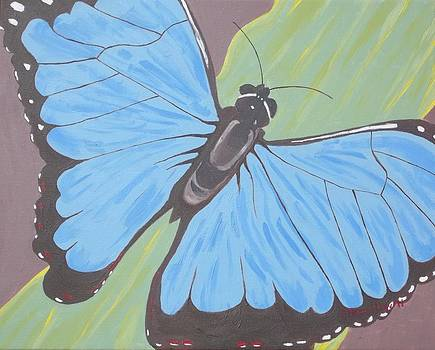 Butterfly by Christine Hamilton