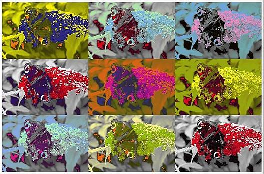 Butterfly Collage by Geoff Cooper