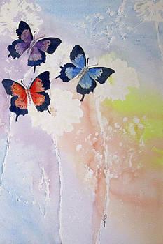 Butterfly dream by Elvira Ingram