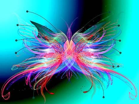 Butterfly Effect by Amanda Struz