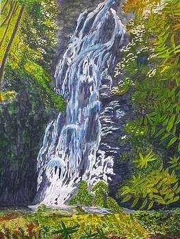 Butterfly Falls by RE   Ruth Thomas